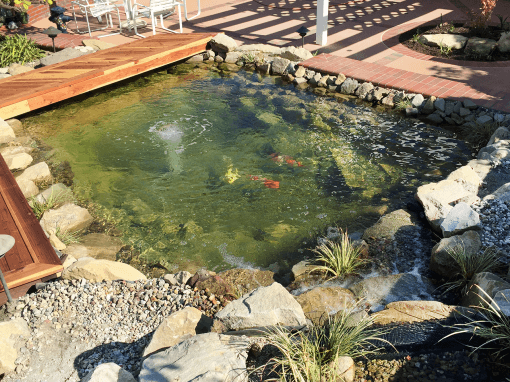 Gorgeous Koi Pond With a View – Small Yard Remodel!