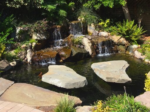 Custom pond installation in los angeles and southern for Best koi pond design 2017