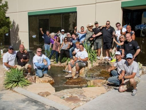 The Pond Stars invite us to build a pond for TANKED Acrylic Tank Manufacturing