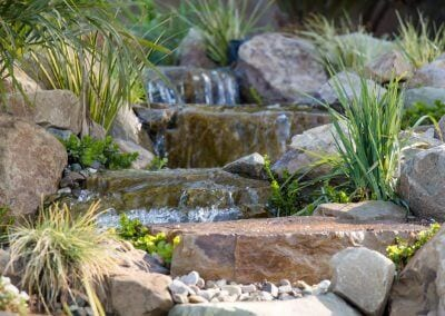 Enchanted Koi Garden
