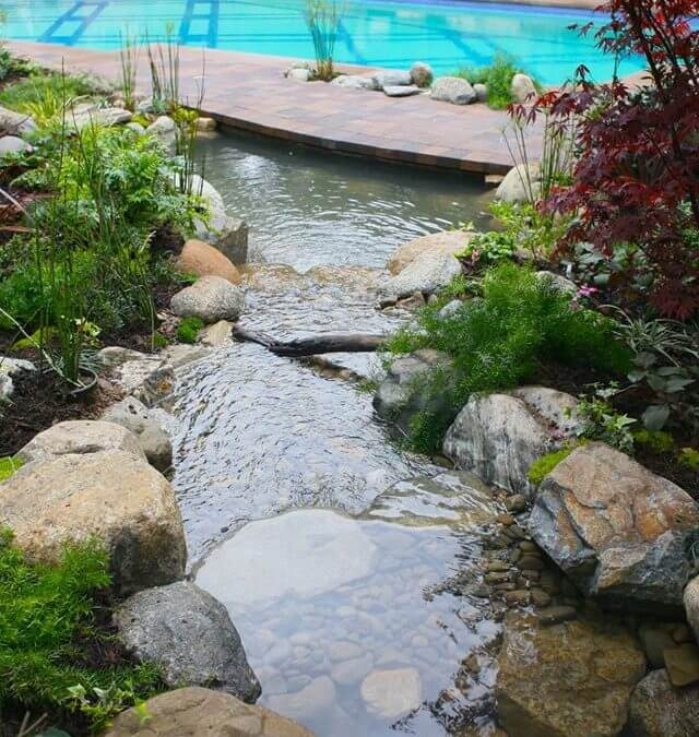 Pool Waterfall and Koi Pond Combined 2-in-1!