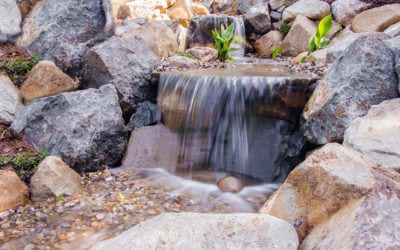How to Spot and Fix Leaks in Your Garden Pond