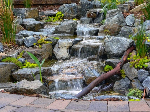 Natural Sequoia Stream | 12′ Pondless