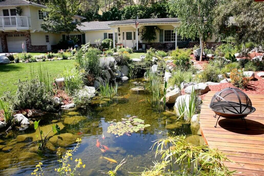 Pond maintenance services california waterscapes company for Pond cleaning services