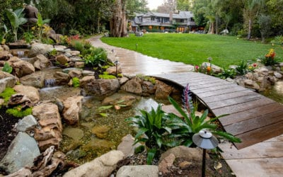 10 Do's and Don'ts of Outdoor Ponds