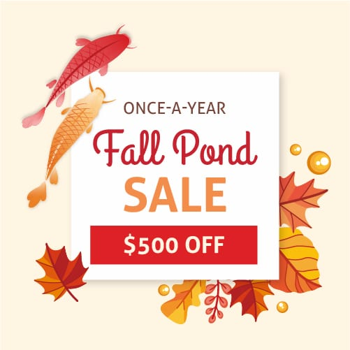 Fall Promotion! $500 OFF!