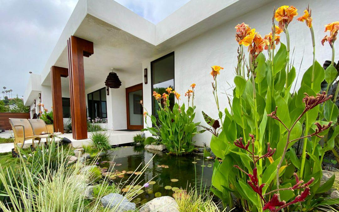 Tropical Studio City | 38′ x 8′ Koi Pond