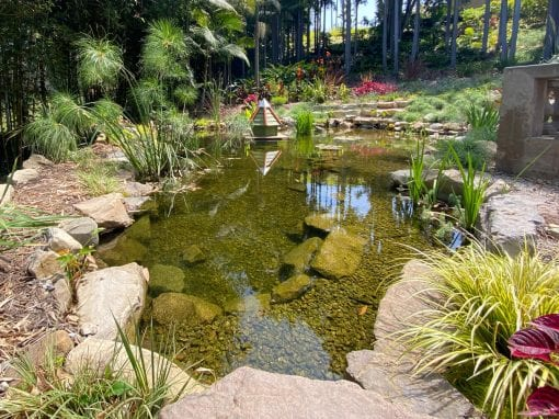 Virginia Robinson Gardens | 30′ x 35′ Pond