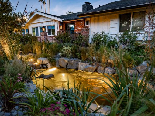 Front Yard Oasis | 3 Small-Medium Ponds